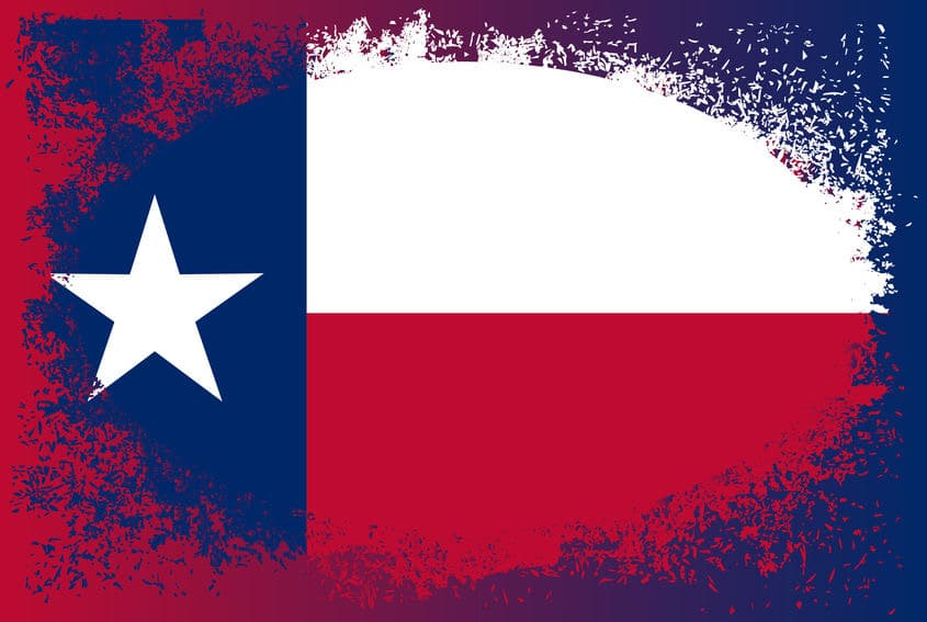 Immigration Bonds in Texas